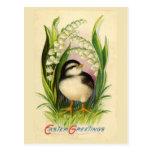 Poca postal del vintage del pájaro de Pascua