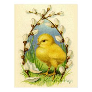 Poca postal del vintage del polluelo de Pascua