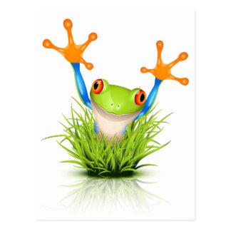 Poca rana arbórea en la hierba postal