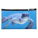 Poca tortuga de mar