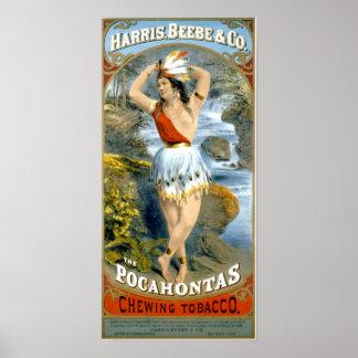 Pocahontas Native American Maiden Vintage Ad Poster