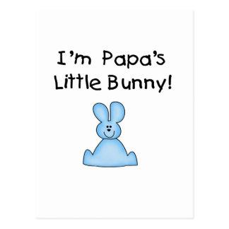Pocas camisetas y regalos del conejito de la papá tarjetas postales