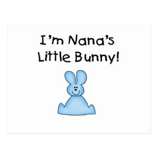 Pocas camisetas y regalos del conejito de Nana Postales