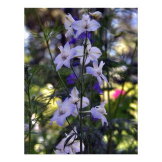 Pocas flores de la estrella plantilla de membrete