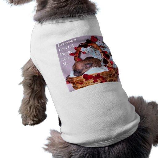 Pocas sorpresas camisetas de perro