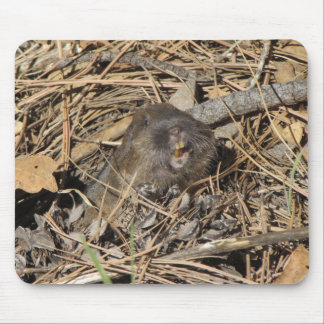 Pocket Gopher Mouse Pad