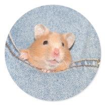 Pocket hamster sticker