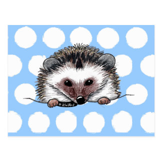 Pocket Hedgehog Postcard