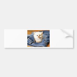 Pocket Kitten Bumper Sticker