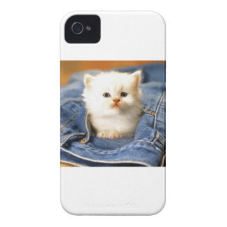 Pocket Kitten iPhone 4 Case-Mate Case