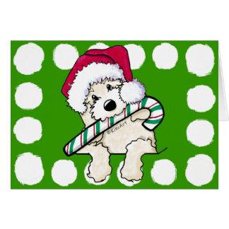 Pocket Santa Doodle With Candycane Card