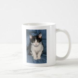 poco1 tazas de café