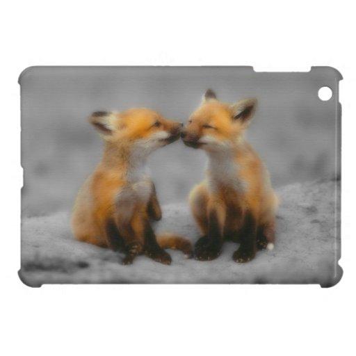 Poco amor del Fox