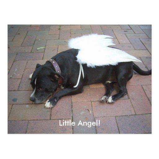 ¡Poco ángel! Postal
