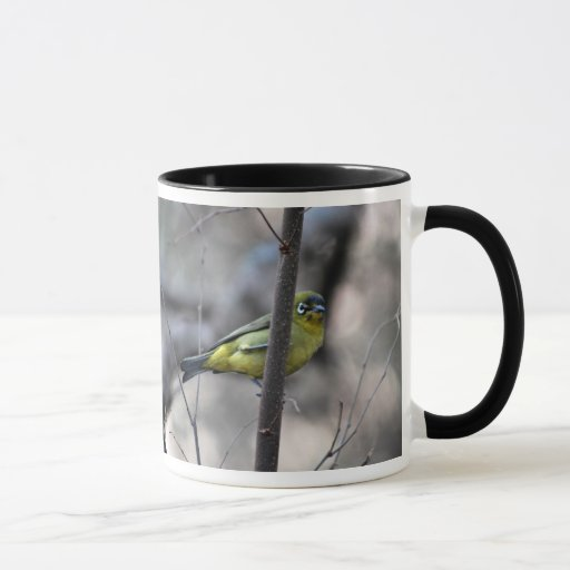Poco blanco+pájaro del ojo en una ramita taza
