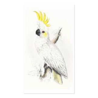 Poco Cockatoo Azufre-Con cresta de Edward Lear Tarjetas De Visita
