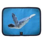 Poco folio A de la tortuga de mar Planificadores