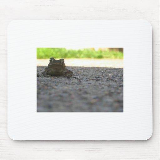 Poco Froggy Tapete De Raton