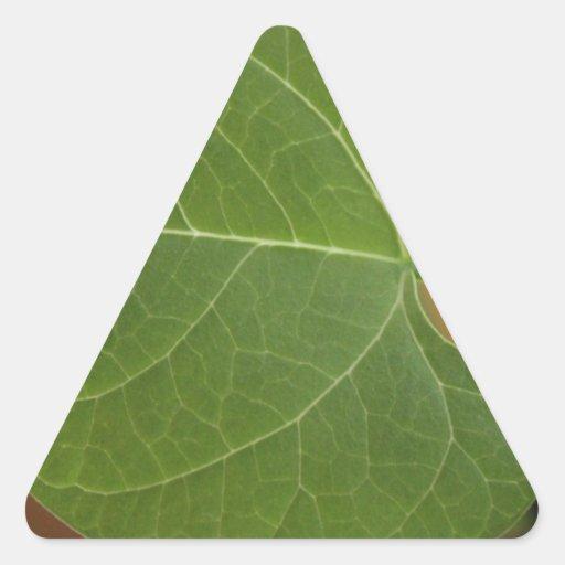 Poco frondoso calcomania triangulo personalizadas