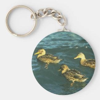 Poco llavero Ducky