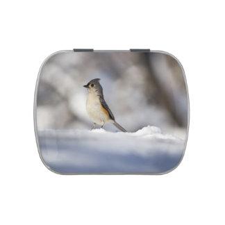 Poco pájaro de la nieve frascos de caramelos