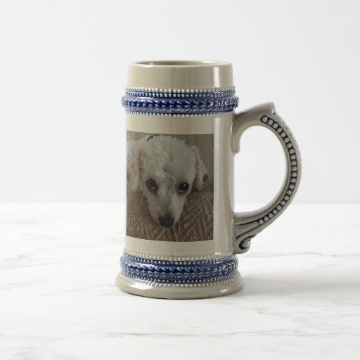 Poco perro de caniche blanco de la taza de té