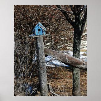 Poco poster/impresión azules del Birdhouse