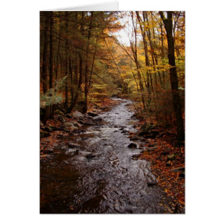 Pocono Stream in Autumn Card