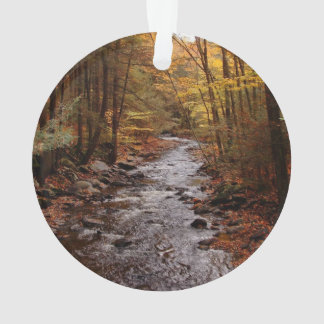 Pocono Stream in Autumn Ornament