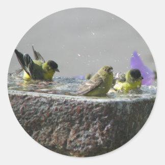 Pocos Goldfinches en Birdbath Pegatina Redonda