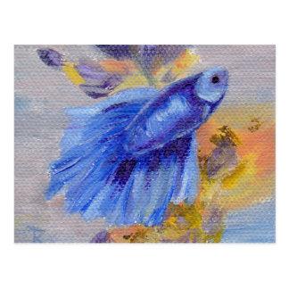 Pocos pescados azules de Betta Postal