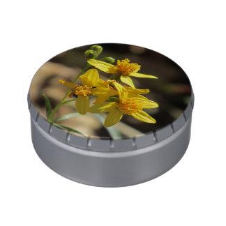 Pocos Wildflowers de la cabeza del limón Latas De Caramelos