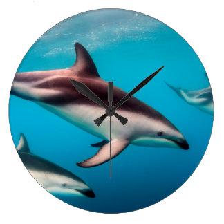 Pod of Dusky Dolphins off of Kaikoura Large Clock