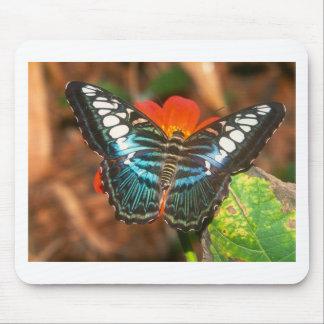 podadoras de las mariposas mouse pads
