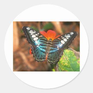 podadoras de las mariposas pegatina redonda