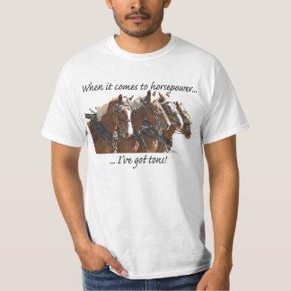 Poder de caballo belga playera