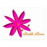 Poder de la paleta (rosa) postales