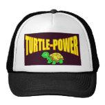 Poder de la tortuga gorro