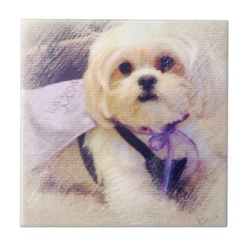 Poder del perrito por Bella Azulejos Ceramicos