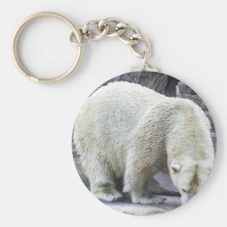 Poder polar llavero redondo tipo pin