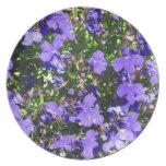 Poder púrpura platos de comidas