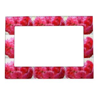 Poder rosado marcos magnéticos de fotos
