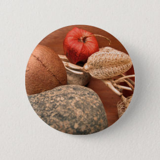 Pods, Rocks, and Seeds-.jpg Pinback Button
