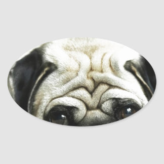 POE POE THE LITTLE PUGSTER OVAL STICKER