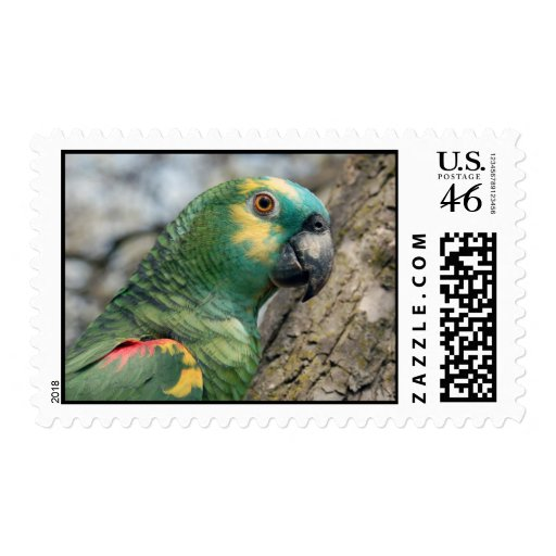 Poe Stamp