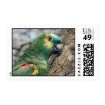 Poe Postage Stamp