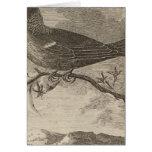 Poebird, New Zealand Card
