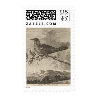 Poebird, Nueva Zelanda Timbres Postales