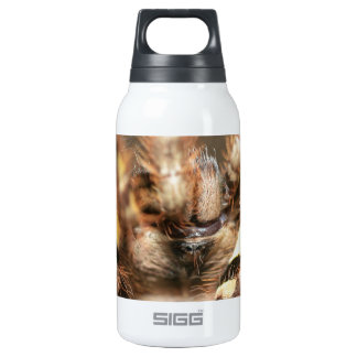Poecilotheria striata 10 oz insulated SIGG thermos water bottle