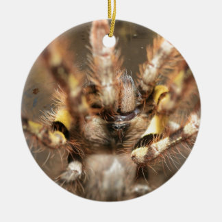 Poecilotheria striata Double-Sided ceramic round christmas ornament